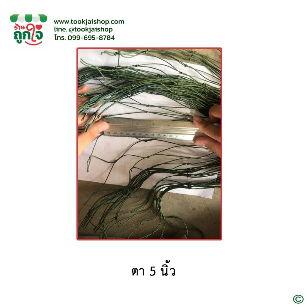 ตาข่ายอวนโปลี เขียวขี้ม้า เบอร์ 380/18 ตา 5 นิ้ว กว้าง 2 เมตร ยาว 30 เมตร